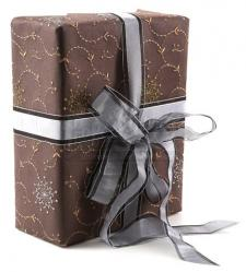 Emmett Cullen's Present for Bella