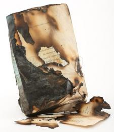 Bella Cullen's Burned The Merchant of Venice Book